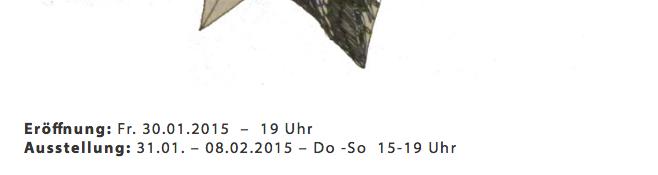 Bildschirmfoto 2015-01-23 um 13.13.01